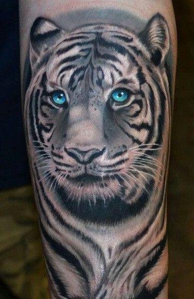Тигр на пояснице порно