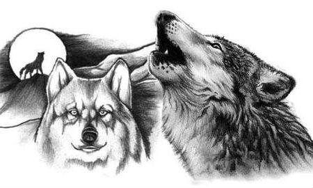 Татуировка волк - значение, эскизы тату и фото